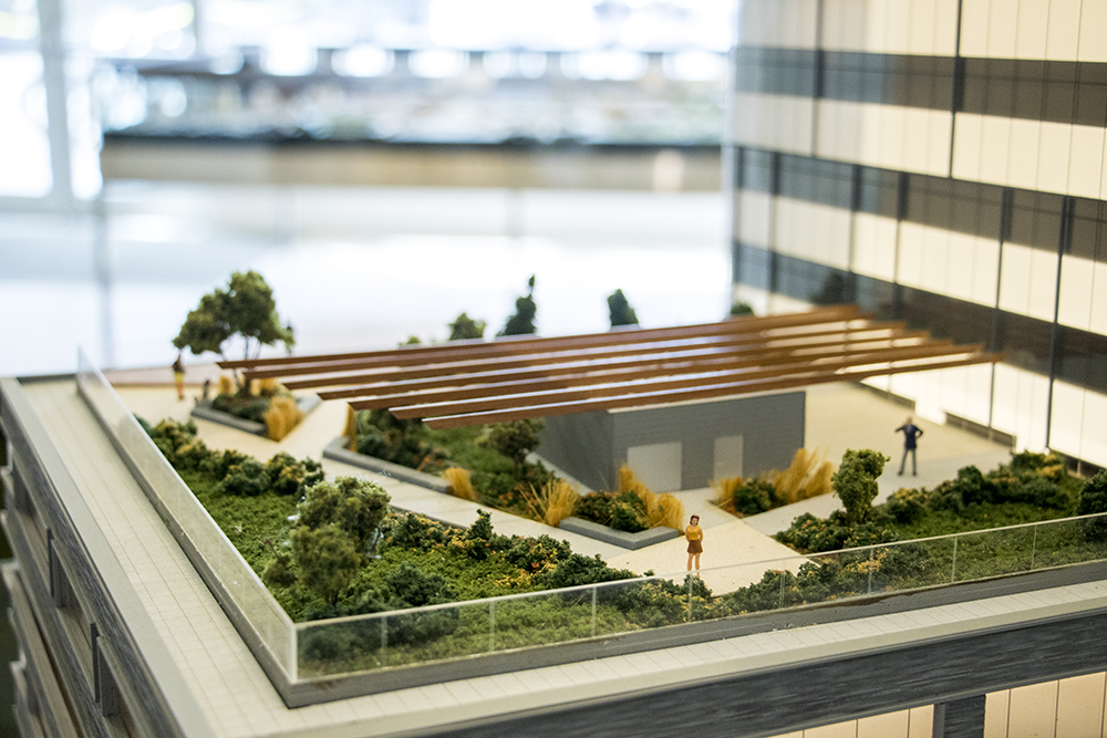 A green roof concept on a model of the new DaVita being built behind Union Station in the office of the real estate brokerage firm Slifer, Smith & Frampton, Oct. 19, 2017. (Kevin J. Beaty/Denverite)