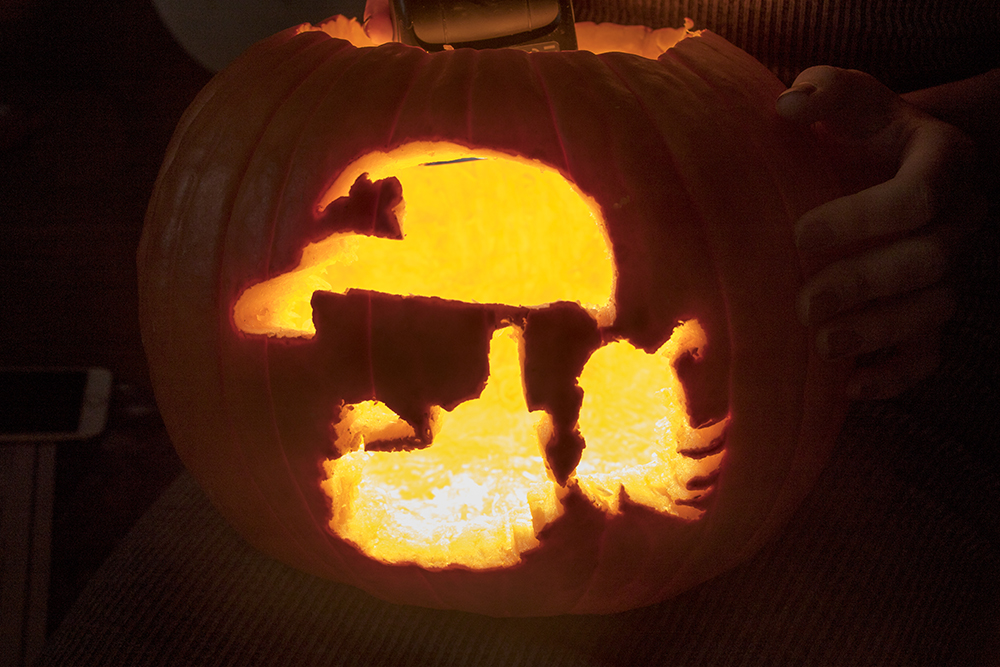 Oct. 23, 2017. (Kevin J. Beaty/Denverite)  denver; colorado; denverite; kevinjbeaty; jack-o-lantern; pumpkin; halloween; crafts;