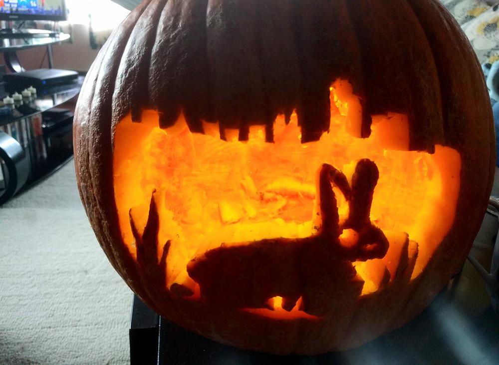 (Kevin J. Beaty/Denverite)  pumpkin; jack o lantern; halloween; denverite; denver; colorado;