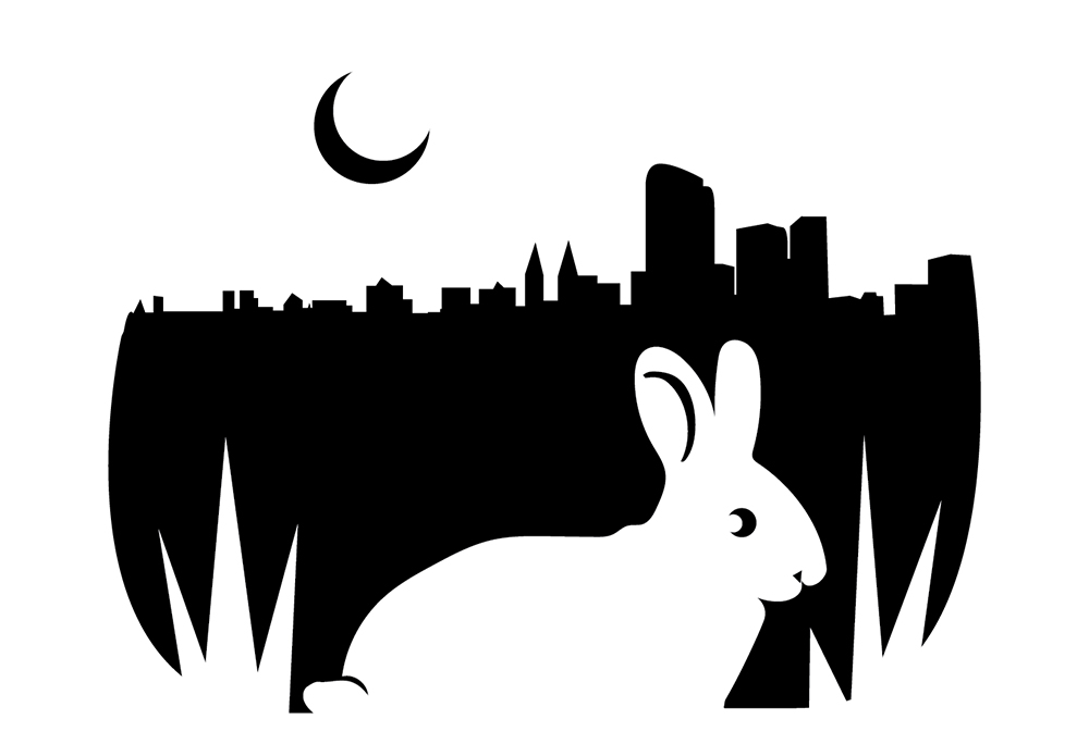 Carve a Denver urban bunny into your pumpkin! (Kevin J. Beaty/Denverite)  jack-o-lantern; halloween; pumpkin; crafts; denverite; kevinjbeaty;