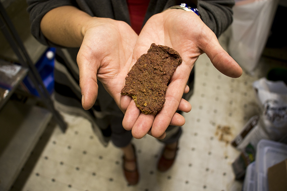 """Wendy Lu McGill holds what she hopes is her golden ticket to national distribution: BBQ-flavored """"chirpy jerky."""" Rocky Mountain Micro Ranch, Nov. 3, 2017. (Kevin J. Beaty/Denverite)  denver; colorado; insects; agriculture; bug farm; food; sustainability; morrison road; westwood; denverite; kevinjbeaty;"""