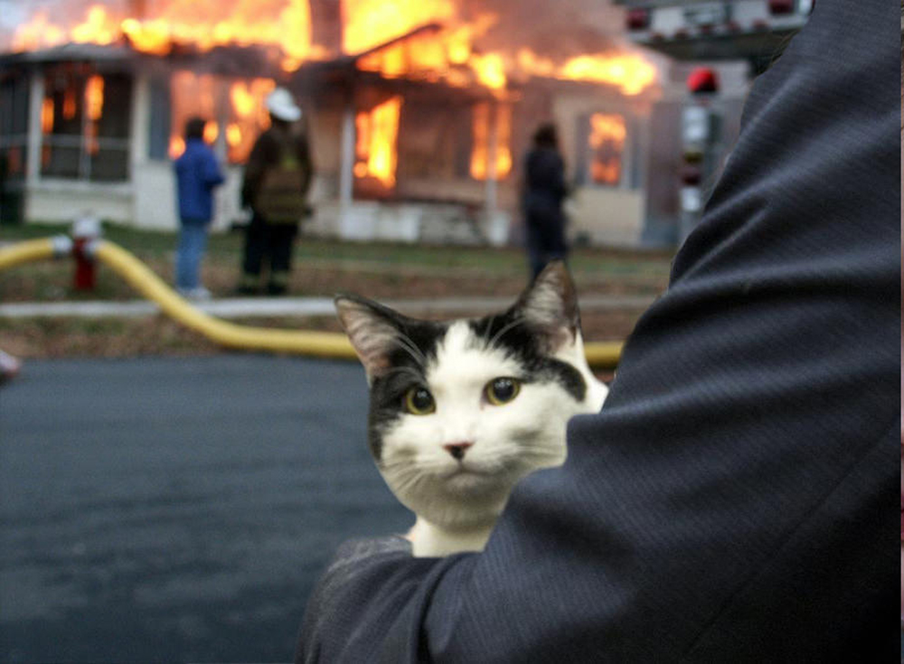 """""""Pyro Kitty"""" had the most upvotes at the time of publishing. (PhatGab/Reddit)"""
