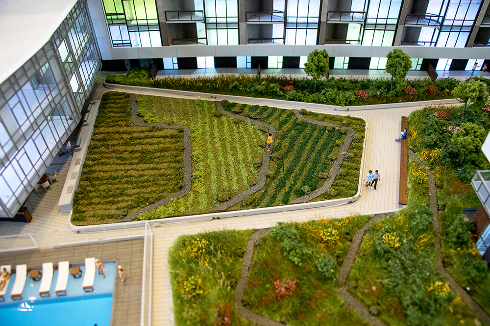 A green roof atop a model of the future Lakehouse multi-use building. Sloans Denver, Nov. 16, 2017. (Kevin J. Beaty/Denverite)  denver; colorado; denverite; kevinjbeaty; sloans lake; sloans denver; development; residential real estate; lakehouse;