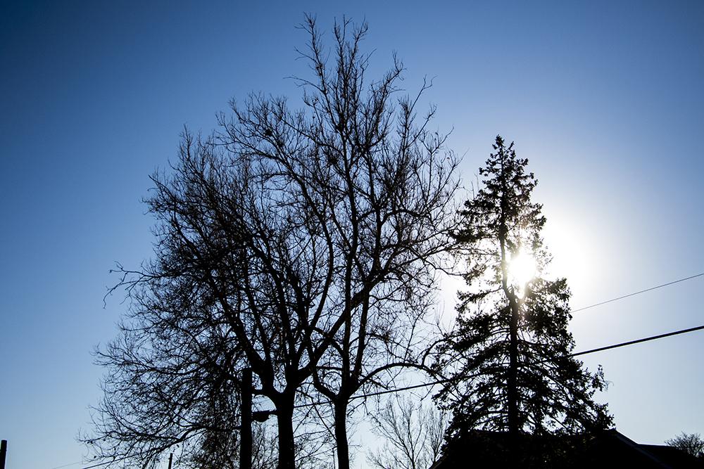 A sunny, frigid day in Platt Park. (Kevin J. Beaty/Denverite)  cowx; denver; colorado; winter; weather; sunny; kevinjbeaty; denverite; Platt Park