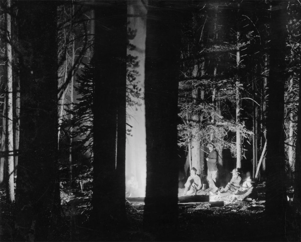 Men and women relax near a campfire at night in a Colorado pine forest, likely between 1910 and 1920. (Colorado Association/Denver Public Library/Z-7758)