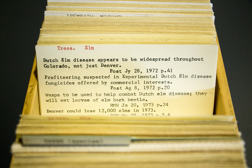 A card in Denver Public Library's catalog dedicated to Dutch elm disease. Fifth floor, Feb. 8, 2018. (Kevin J. Beaty/Denverite)  dpl; denver public library; dplbroadway; card catalog; denverite; colorado; denver; kevinjbeaty;