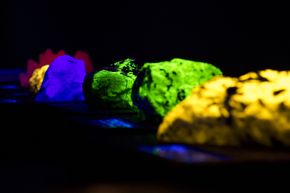 """Glowing rocks from the DMNS collection. An early look at """"Creatures of Light,"""" a forthcoming exhibit at the Denver Museum of Nature and Science, Feb. 15, 2018. (Kevin J. Beaty/Denverite)denver; colorado; denverite; kevinjbeaty; dmns; denver museum of nature and science; science;"""