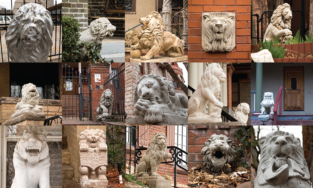 Stone lions, most in Capitol Hill, March 27, 2018. (Kevin J. Beaty/Denverite)  architecture; yard art; denver; colorado; capitol hill; denverite; kevinjbeaty;