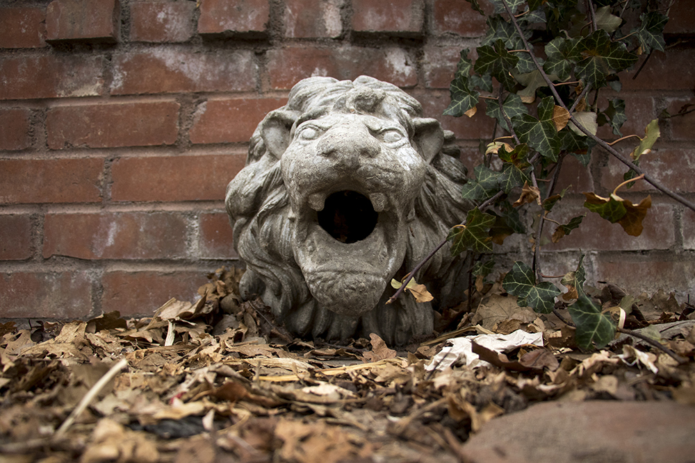 Stone lions on Pennsylvania Street, Capitol Hill, March 27, 2018. (Kevin J. Beaty/Denverite)  architecture; yard art; denver; colorado; capitol hill; denverite; kevinjbeaty;