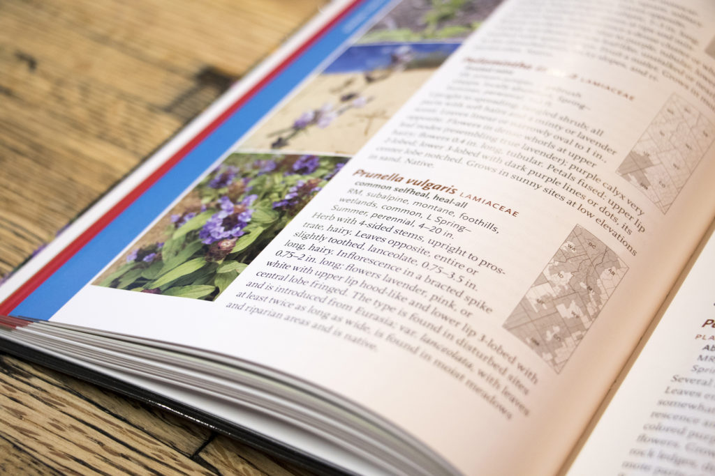 """""""Wildflowers of the Rocky Mountain Region"""" includes maps, names and descriptions of all the flowers you may find out on the trail. (Kevin J. Beaty/Denverite)"""
