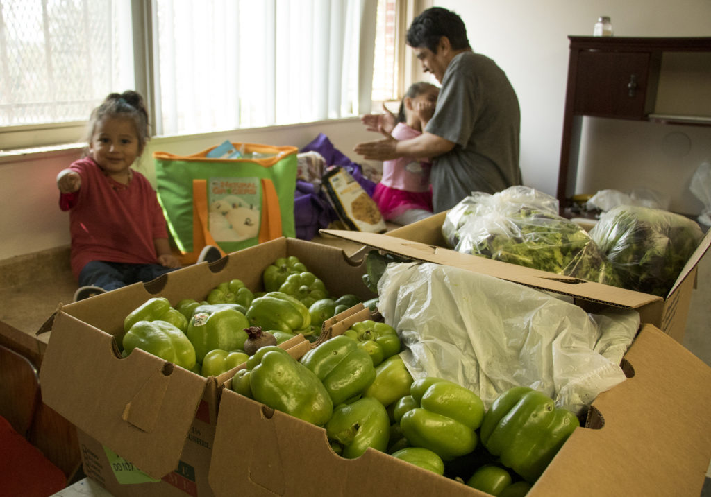 Antonia Montoya plays with her grandkids, Nathan (left) and Angelina in the Globeville Recreation Center after a community food bank run by the Birdseed Collective wrapped up for the day, Aug. 20, 2018. Denver Food Rescue partners with BirdSeed and others to get nutritious food to people who need it. (Kevin J. Beaty/Denverite)