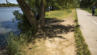 """A paved bike/walking/running path and a dirt """"social trail"""" on the south side of Sloan's Lake Park, Aug. 27, 2018. (Kevin J. Beaty/Denverite)"""