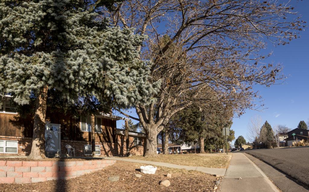 Ruth's home in Denver's Fort Logan neighborhood, Dec. 14, 2018. (Kevin J. Beaty/Denverite)