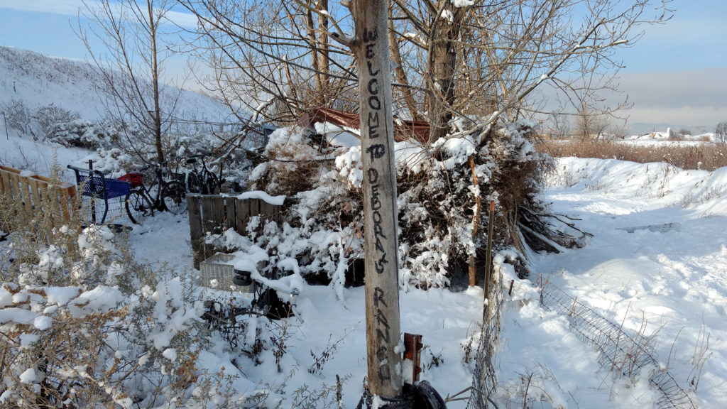 A couple experiencing homelessness lives in this camp along Sand Creek. (Donna Bryson/Denverite)