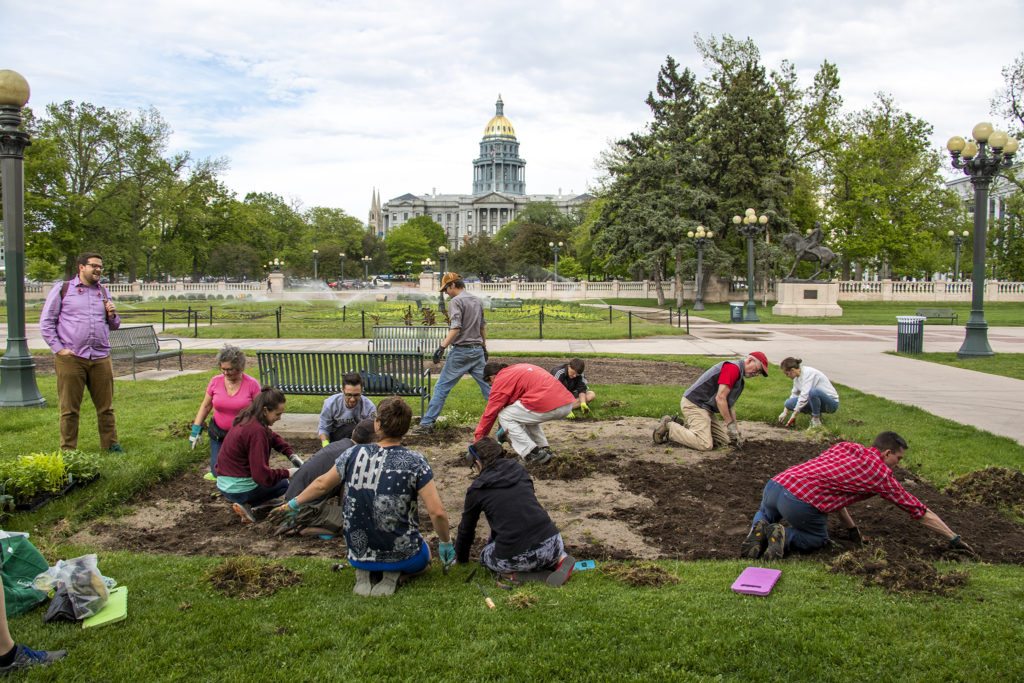 Grow Local Colorado and the Returned Peace Corps Volunteers of Colorado plant vegetables in Civic Center Park, May 30, 2019. (Kevin J. Beaty/Denverite)