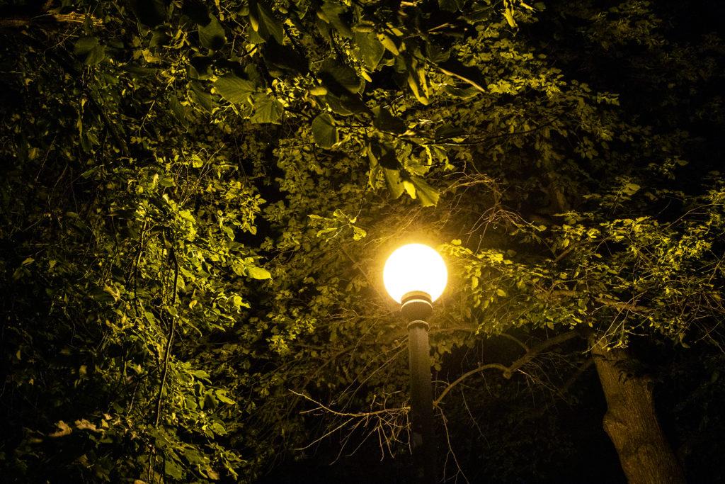Historic globe lights in Cheesman Park, June 27, 2019. (Kevin J. Beaty/Denverite)