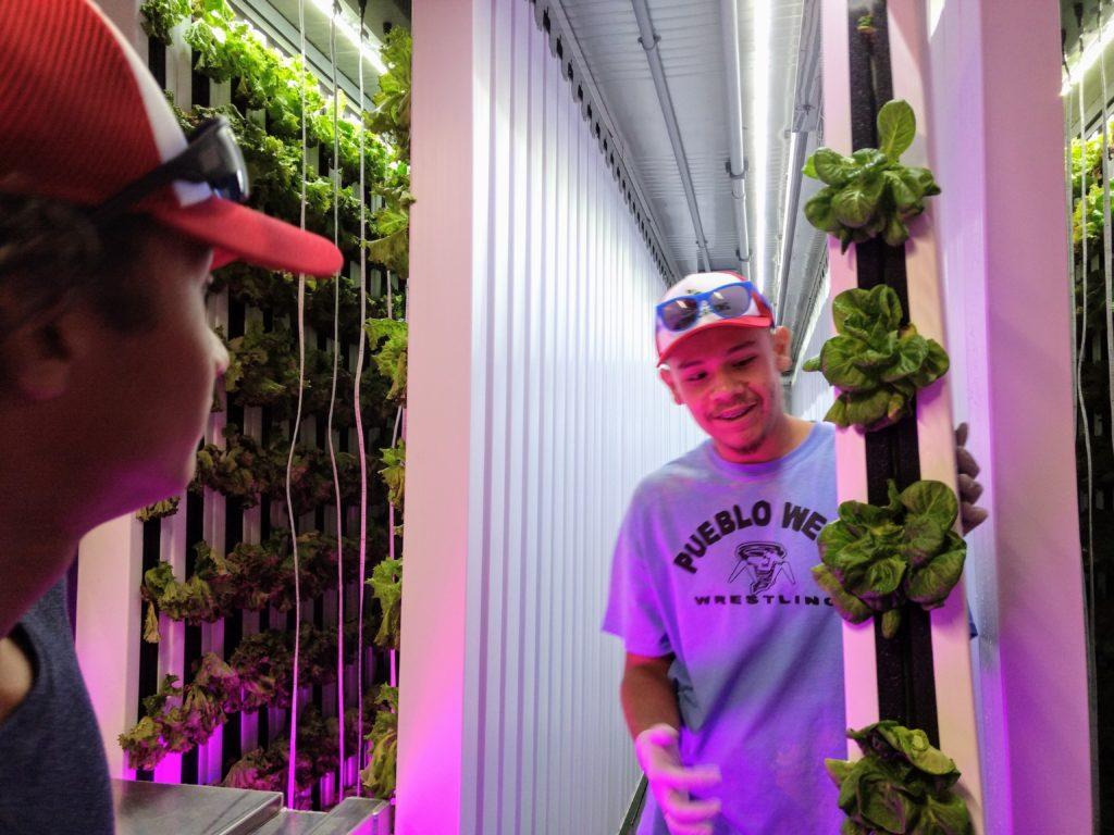 Metro Caring urban farming intern Abraham Rodriguez.