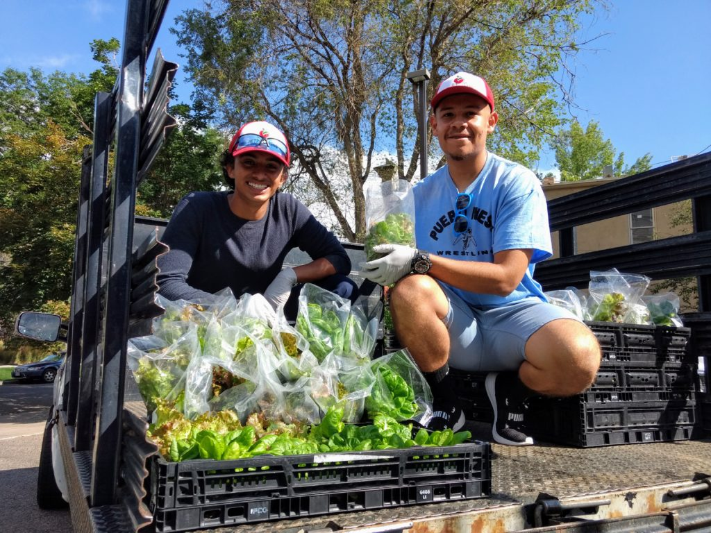 Wilber  Portillo, left, and  fellow Metro Caring urban farming intern Abraham Rodriguez. (Donna Bryson/Denverite)