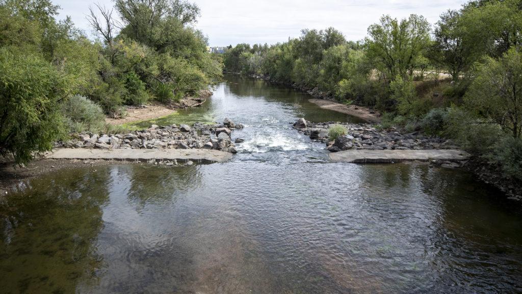 The South Platte River between Denver's Overland and Ruby Hill neighborhoods, Sept. 17, 2019. (Kevin J. Beaty/Denverite)