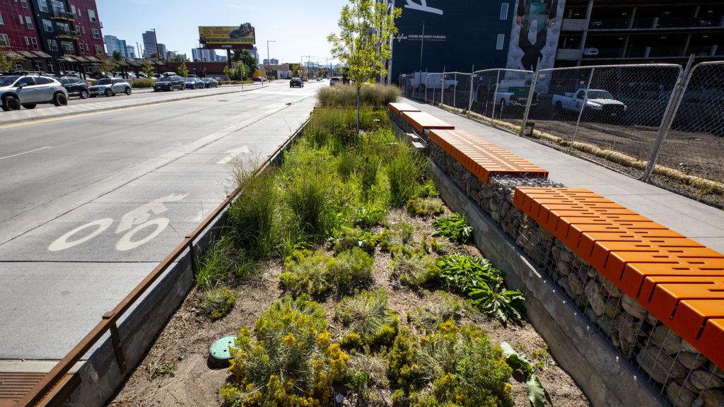 Green infrastructure along Brighton Boulevard, Five Points, Sept. 24, 2019. (Kevin J. Beaty/Denverite)