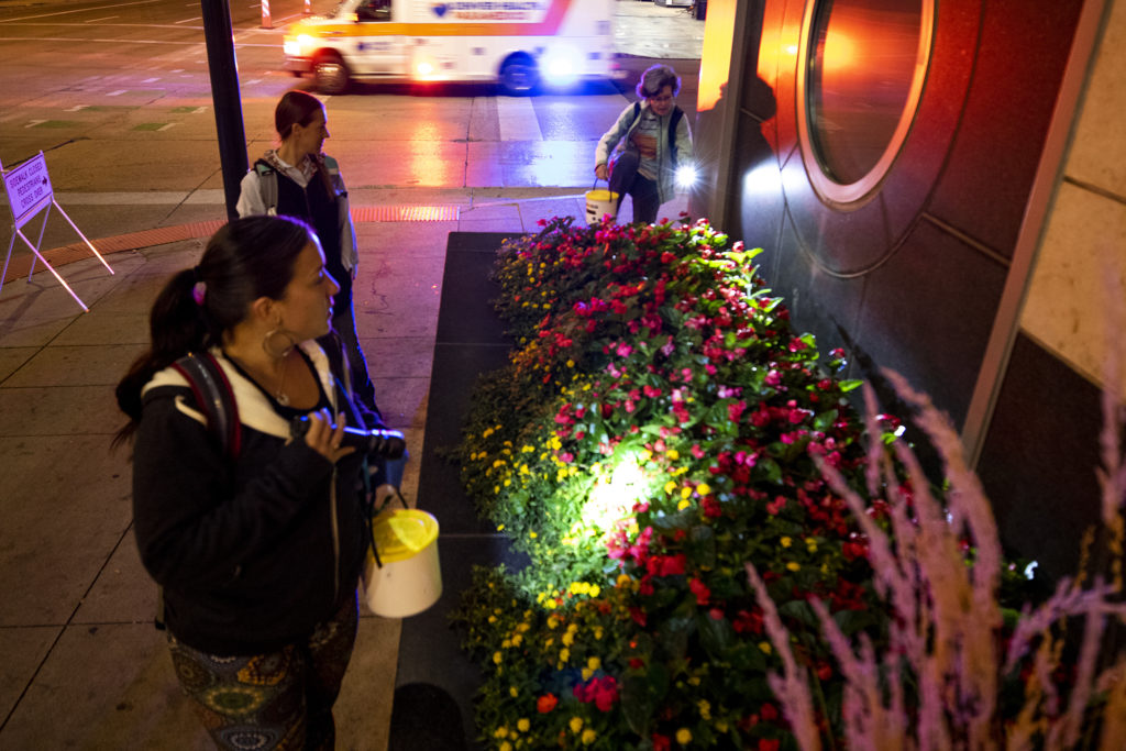 Barbara Masoner, Chelsea Brown and Kelley Patient go hunting for dead birds downtown before dawn, Sept. 18, 2019. (Kevin J. Beaty/Denverite)