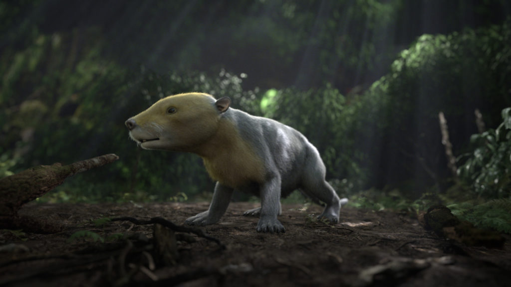 CGI rendering of ancient Taeniolabis mammal taken from the PBS NOVA special, Rise of the Mammals. (Courtesy: HHMI Tangled Bank Studios)