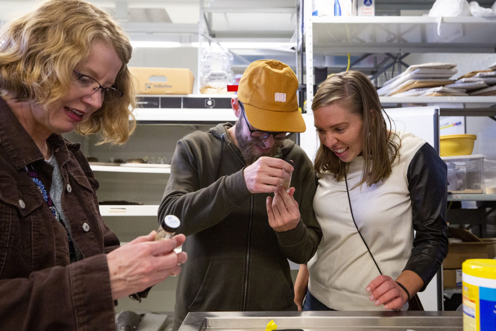 Josh McKee and Colleen Daszkiewicz joyfully inspect a vial containing a parasite inside the Denver Museum of Nature and Science's vertebrate zoology lab, Oct. 25, 2019. (Kevin J. Beaty/Denverite)