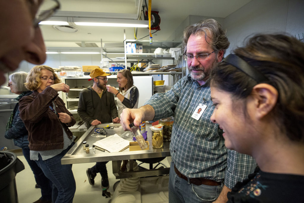 John Demboski, DMNS curator of vertebrate zoology, shows off a vial of parasites during a spooky science tour of the Denver Museum of Nature and Science for Denverite members, Oct. 25, 2019. (Kevin J. Beaty/Denverite)