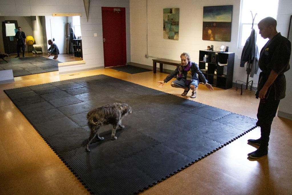 Logan Gray and Deacon Rodda greet Osho the dog inside The Co-Op at 1st's movement studio. Barnum West, Nov. 20, 2019. (Kevin J. Beaty/Denverite)
