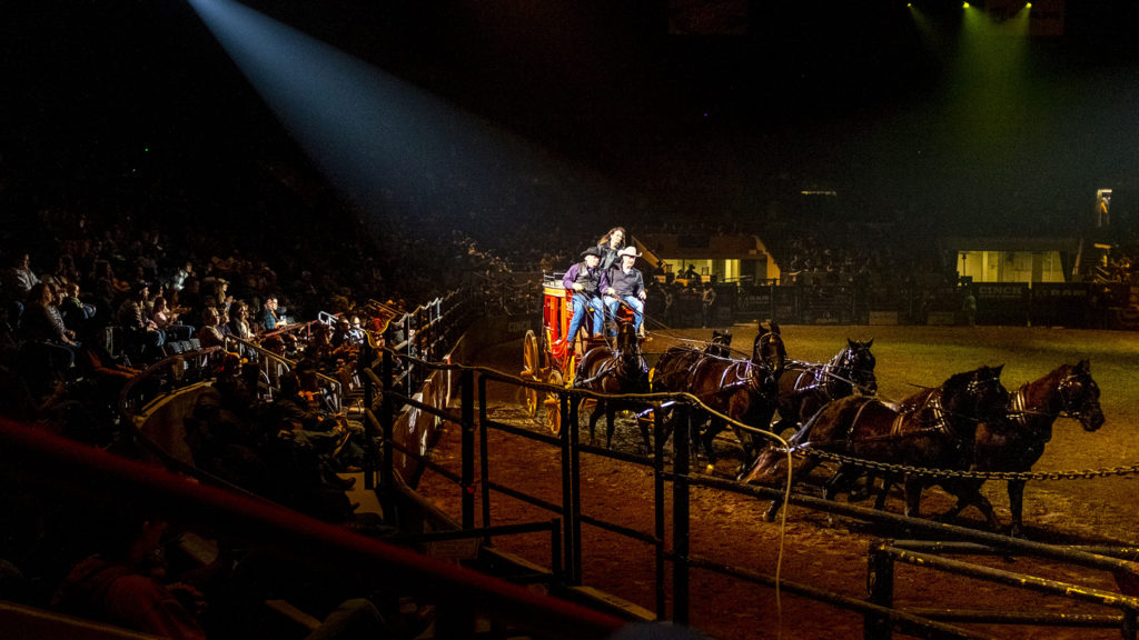 """A stage coach makes the rounds during the """"Colorado vs the World"""" rodeo qualifying event at the National Western Stock Show, Jan. 11, 2020. (Kevin J. Beaty/Denverite)"""