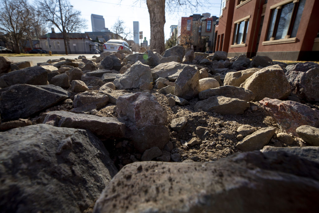 New landscaping outside a Five Points condo building. Jun. 28, 2020. (Kevin J. Beaty/Denverite)