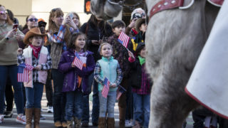 A group of children stares up at horses as they parade down 17th Street during the Western Stock Show opening parade on Jan. 9, 2020. (Lindsay Fendt/Denverite)