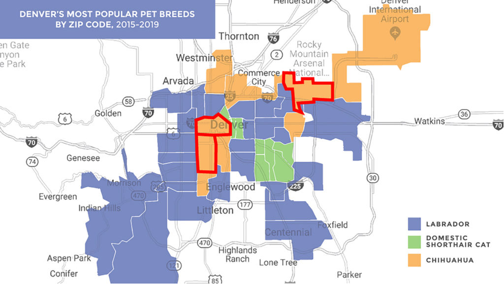 A map of Denver's most-registered pet breeds, overlaid with outlines showing zip codes 80219 (bottom-left to top-right), 80204 and 80239.