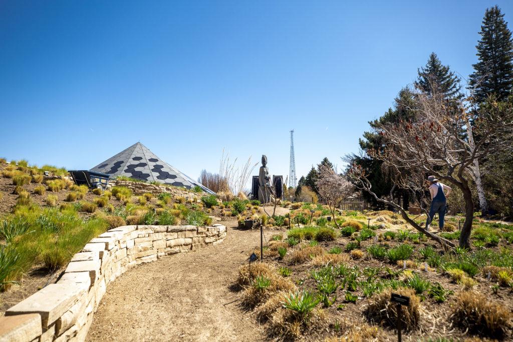 Horticuluralist Jenny Miller at work in the Denver Botanic Gardens, April 7, 2020. (Kevin J. Beaty/Denverite)