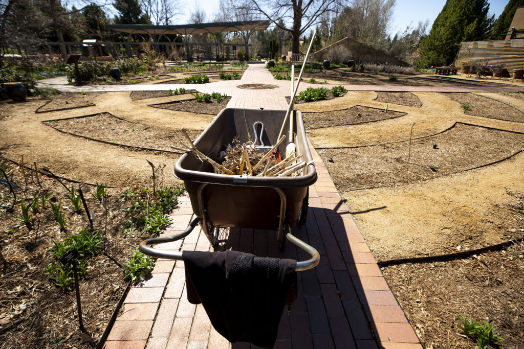 It's time to work at the Denver Botanic Gardens while visitors are not allowed to come by, April 7, 2020. (Kevin J. Beaty/Denverite)