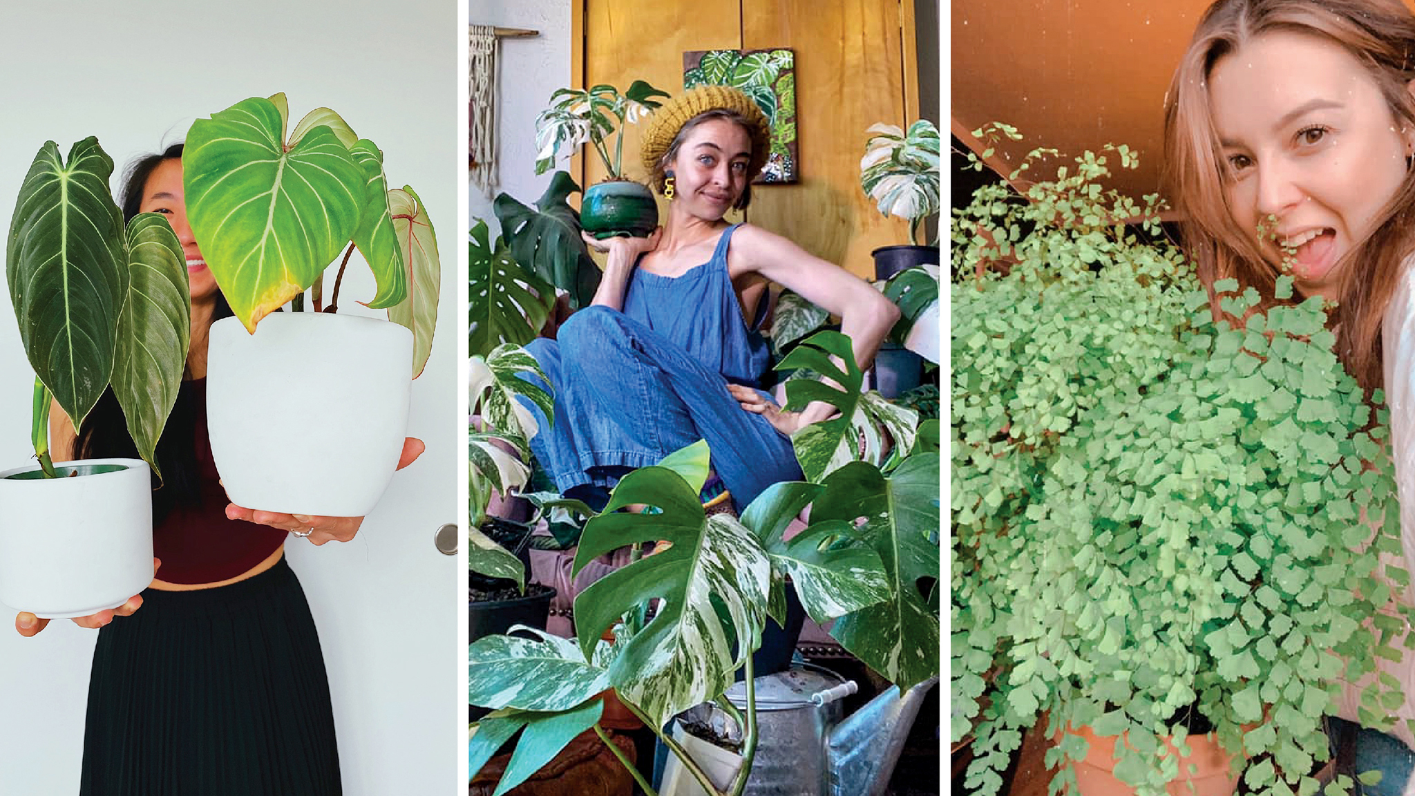 Rose Stechmeyer, Grace Gardner and Lauren Silver pose with their favorite plants. (Courtesy: Colorado Plant Pals)