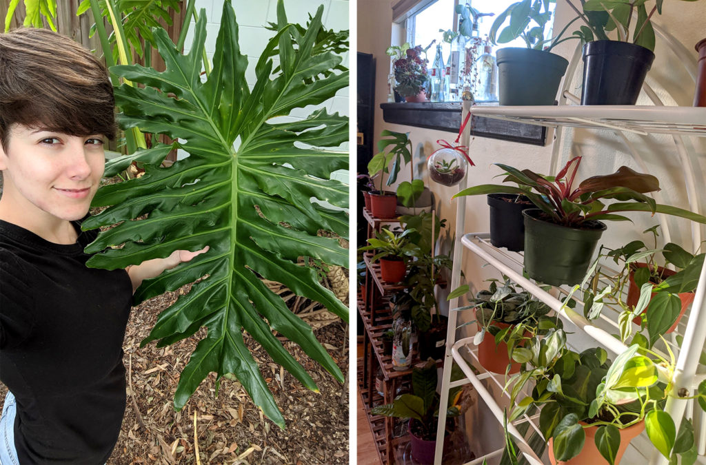 Jillian Taylor Nogueira and some of her plants. (Courtesy: Jillian Taylor Nogueira)