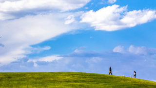 A couple of humans and dogs crest the hill at Ruby Hill Park. June 23, 2020. (Kevin J. Beaty/Denverite)