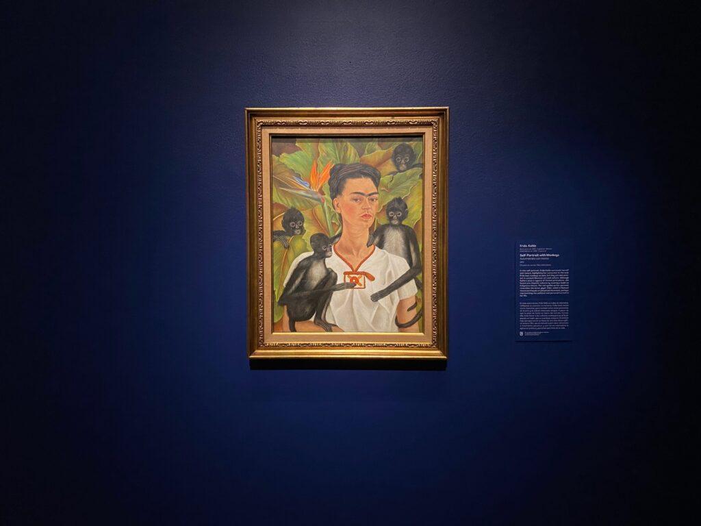 Frida Kahlo's Self-Portrait with Monkeys at the DAM