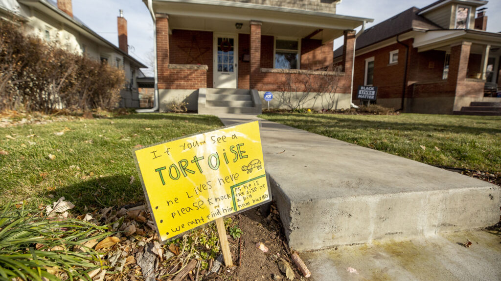 A sign for a lost tortoise outside of the O'Reilly household in Platt Park. Nov. 18, 2020.