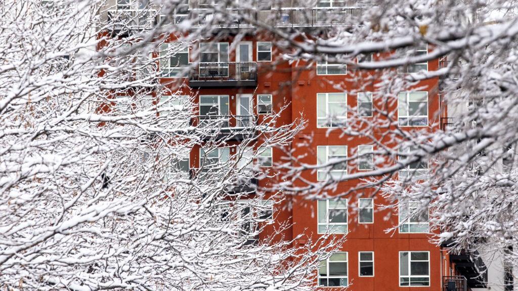 Snow blankets North Capitol Hill. Nov, 24, 2020.