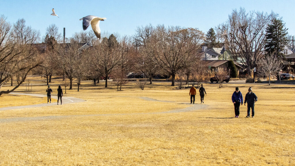 Walkers (and birds) enjoy the sunshine around Sloan's Lake on Jan. 19, 2020.