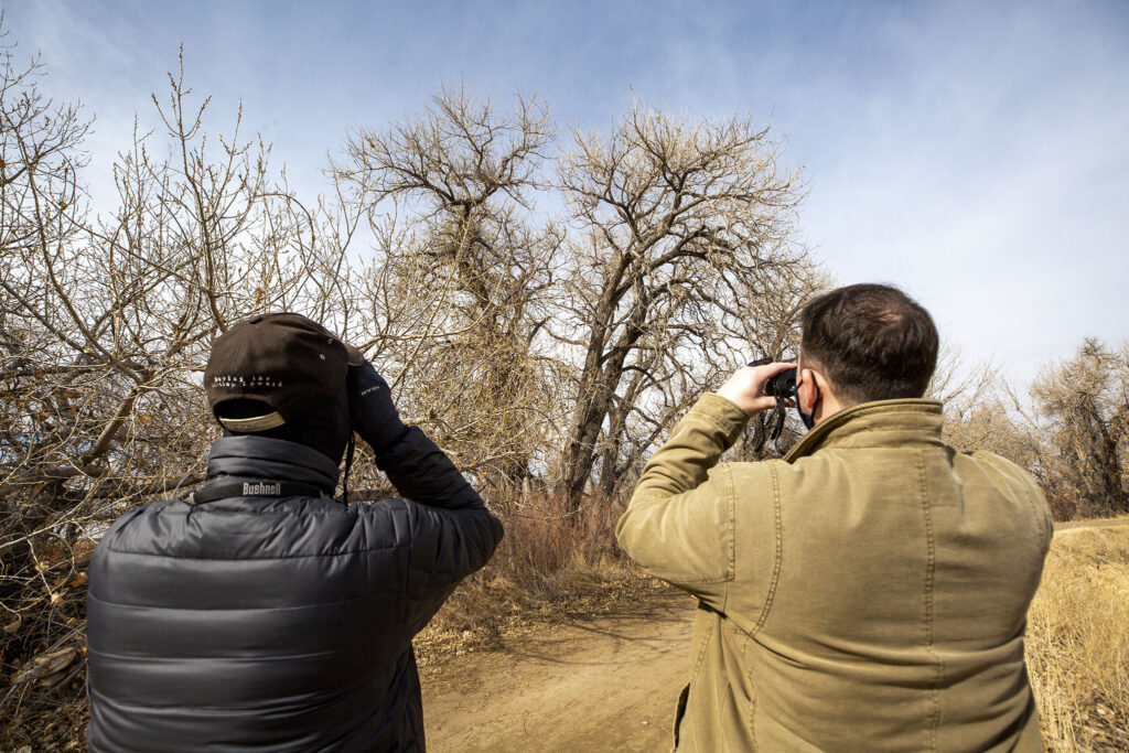 Tom Roller II (left) and Tom Roller III gaze up at a bald eagle during Barr Lake State Park's 9th annual eagle festival. Feb. 6, 2021.