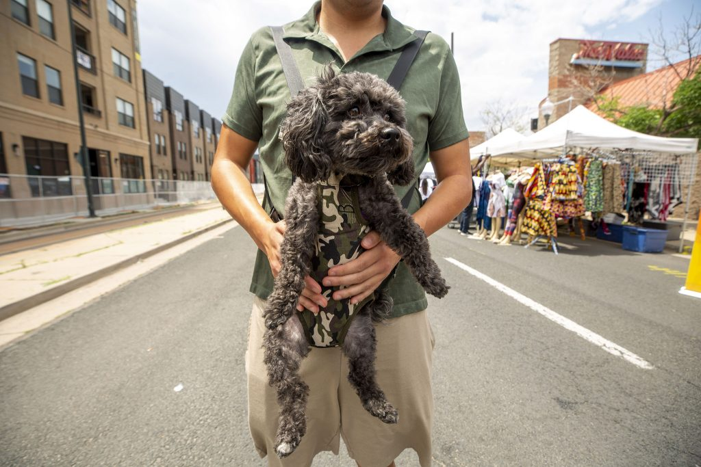 Baby the dog hangs out with Andrew Wong at Denver's Juneteenth Music Festival. June 19, 2021.