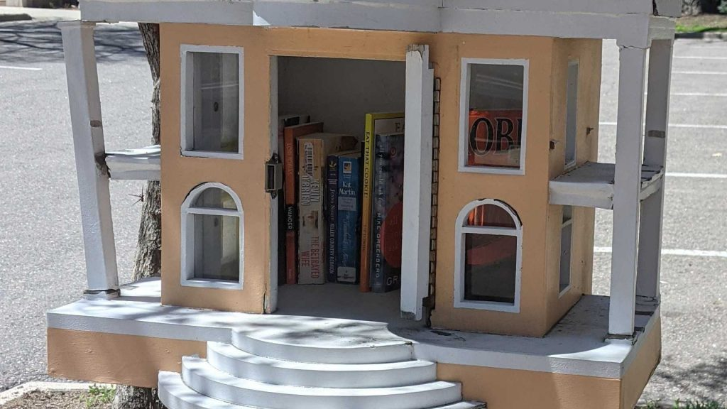 This tiny library, which needs a bit of love, is the subject of this week's game.
