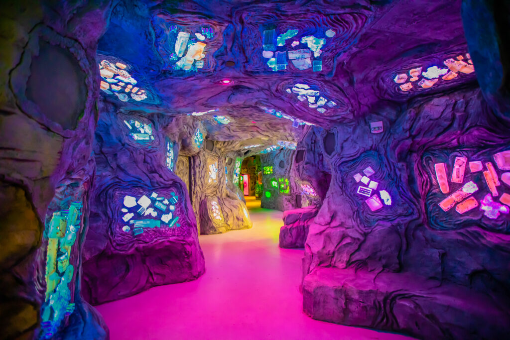 """""""CataCombs"""" in Meow Wolf Denver."""
